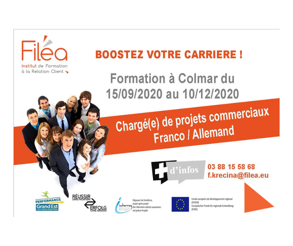CHARGE(E) DE PROJETS COMMERCIAUX OPTION FRANCO-ALLEMAND